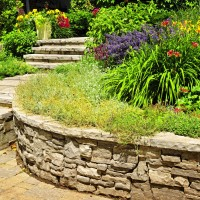 Frequently Asked Questions About Hiring A Professional For Landscape Design