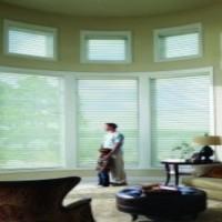 The Reasons Every Home Needs Interior Window Shutters in Bradenton, FL