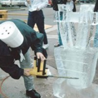 How to Find a Supplier of Ice Luges in Long Island NY