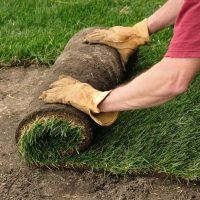 Why Should You Hire a Landscaping Company?