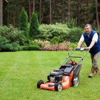 Enhance Your Property with Lawn Cutting Services in Arizona