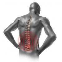 Need the Professional Services of a Chiropractor; Find One in the Loop