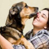 Veterinarian Terms Every Pet Owner Should Know
